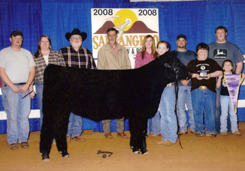 Grand Champion Maine-Anjou Heifer